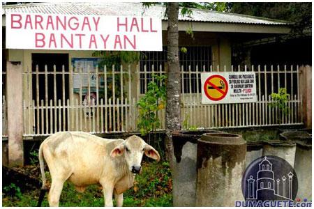 Bantayan Barangay Hall