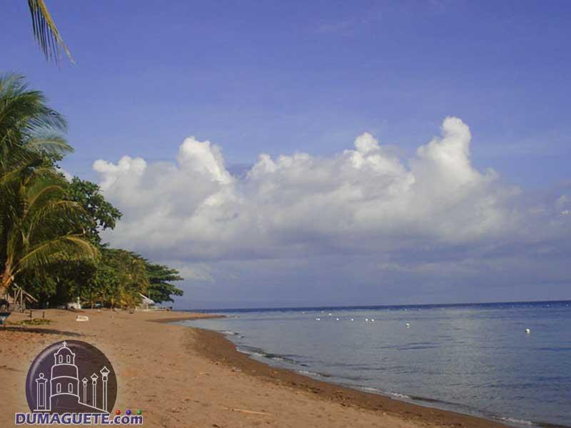 Dauin-Beach
