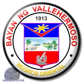 Vallehermoso Official Seal