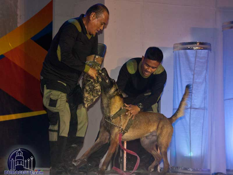 Sandurot Festival - Army Dog Presentation