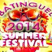 summer festival compilation 2014