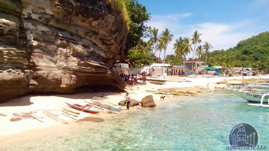 Apo Island White Sand Beach Negros Oriental