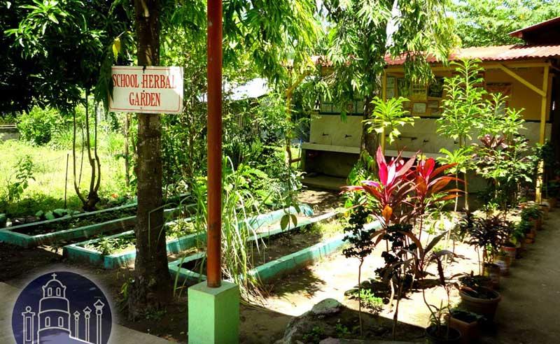 Balugo Elementary School Herbal Garden