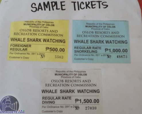 Entrance-fees Whale Sharks Oslob