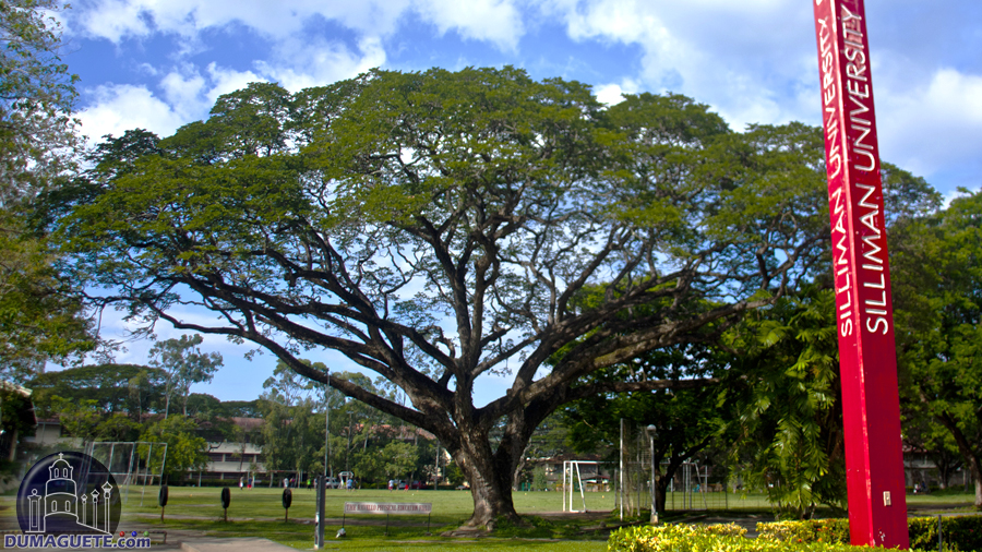 Silliman University Librarry plaza