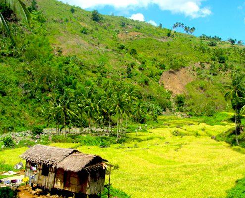 Tayasan Negros Oriental Guincalaban valley