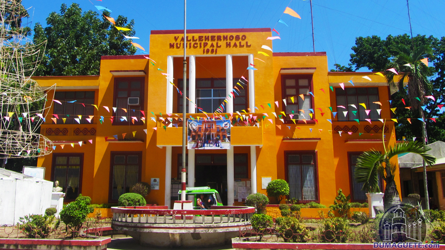 Municipality of Vallehermoso - Municipal Hall