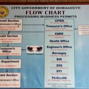 Business Permit Dumaguete Flow Chart