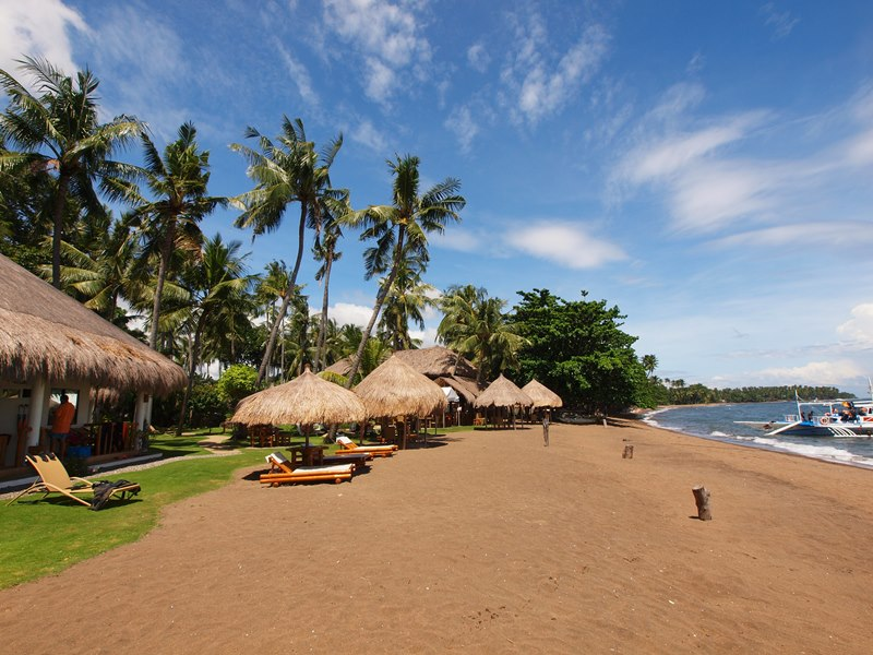 Pura Vida Dive & Beach Resort