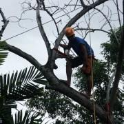 dumaguete rescue-348 helps