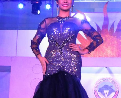 Miss Valencia 2014- Coronation Night