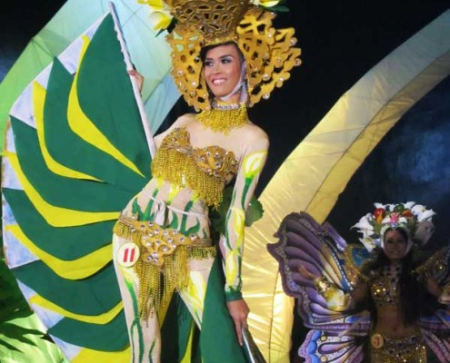 Miss Canlaon Festival Costume