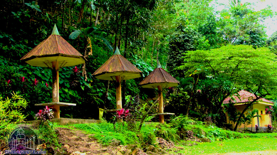 Bayawan City Niludhan Falls cottage