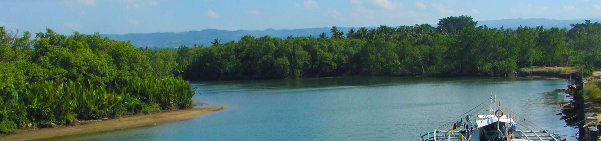 Bayawan City