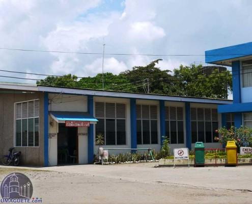 Out Pateint Bais Hospital Building