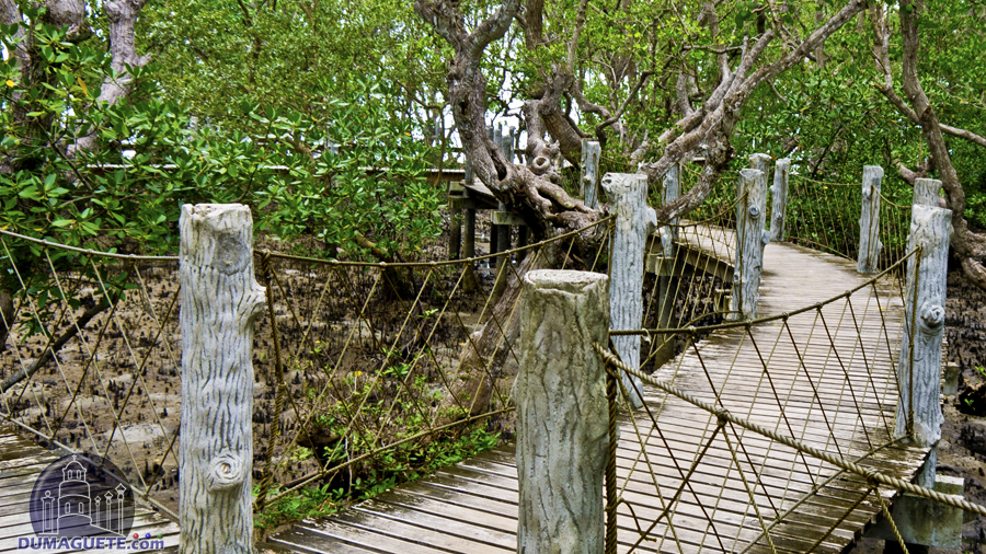 Tourist Spots In Tanjay Negros Oriental