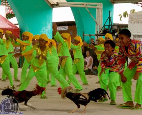 Hambabalud Festival 2016