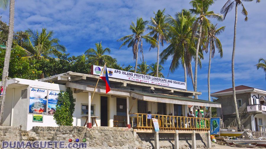 Apo Island Bantay Dagat Collector House