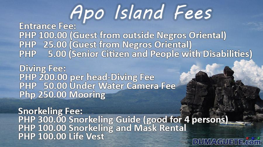 Apo Island Fees