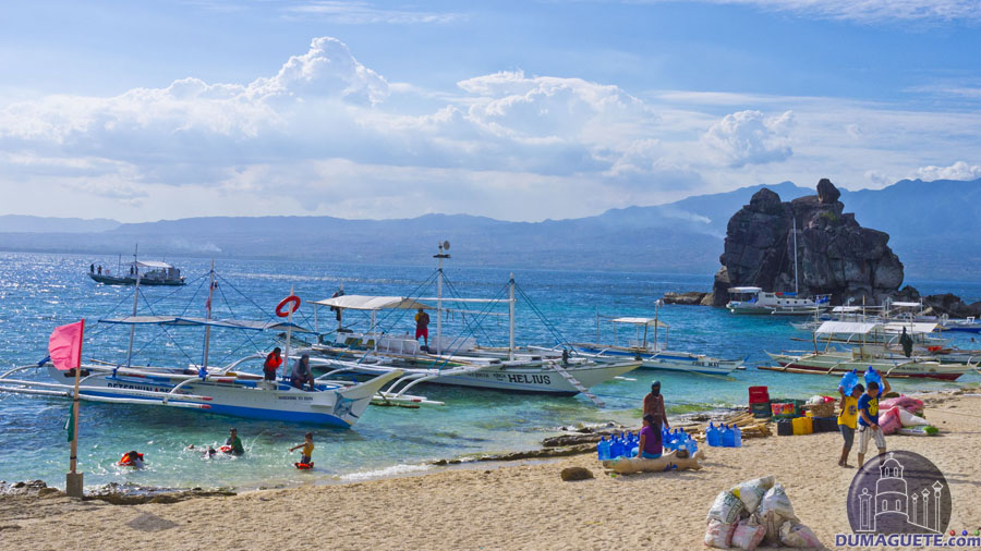 Apo Island - Negros Oriental