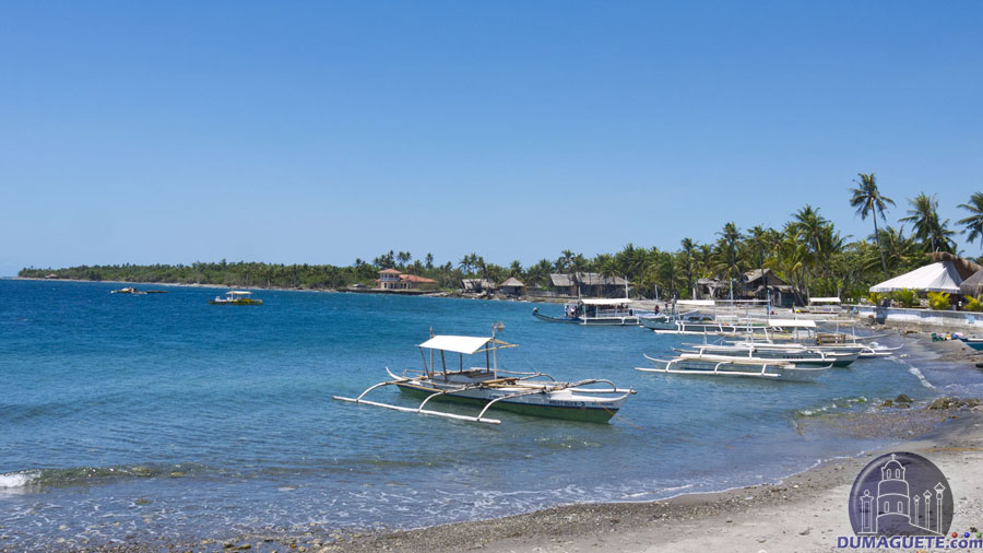 Malatapay Beach and seaport