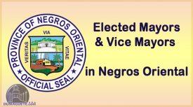 Elected Mayors in Negros Oriental