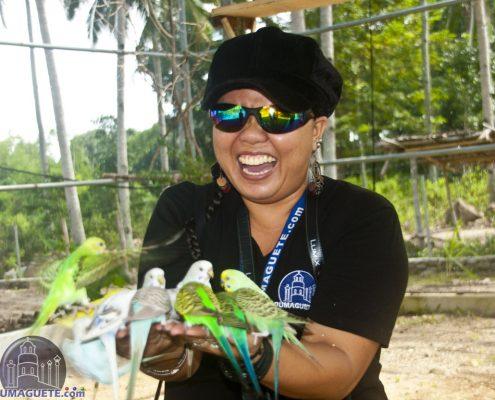 Love Bird Feeding at Amlan Zoo