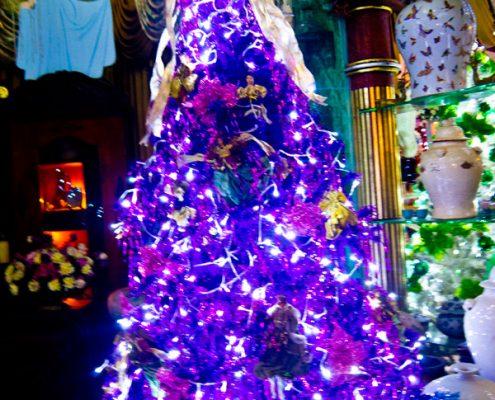 Christmas House 2016 - Dumaguete