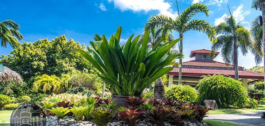 Garden view at Mama Mary's Garden in Sibulan