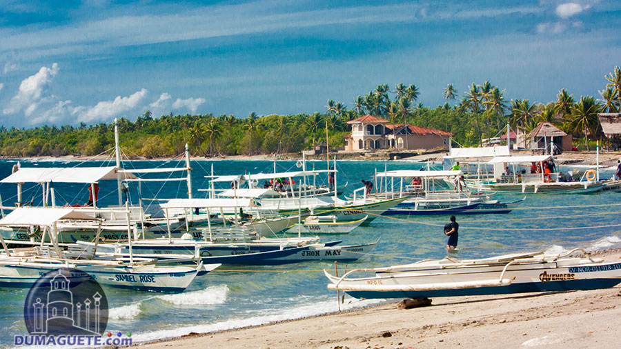 Malatapay Seaport-Zamboguita-Negros-Oriental-Malatapay Market - Boat Rentals