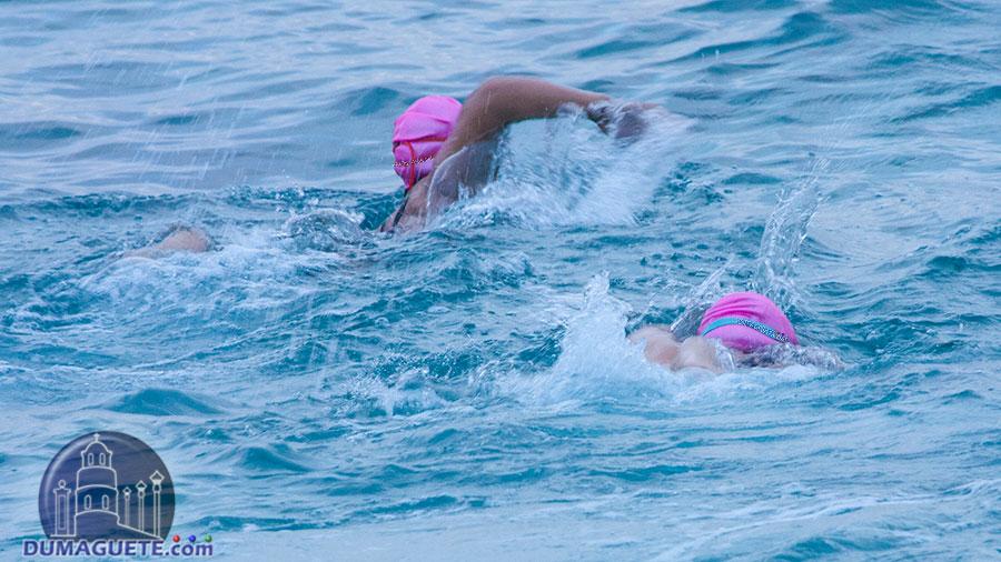 Ocean-6--Swimming