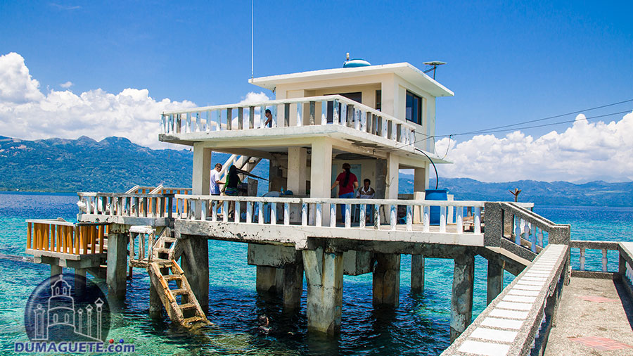 Mantalip Reef in Bindoy-Negros Oriental