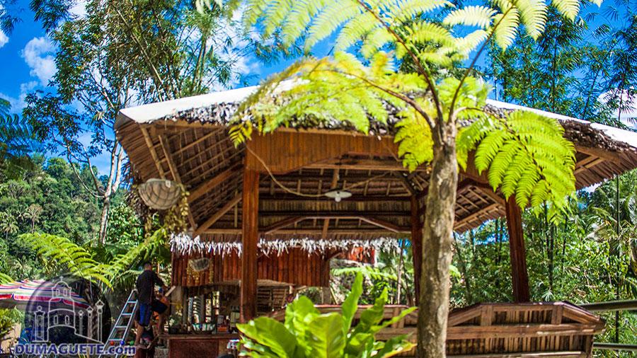 Valencia - Pulang Bato Falls - Negros Oriental