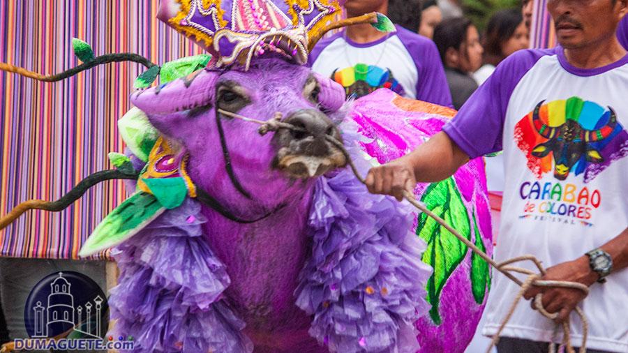 Vallehermoso - Carabao de Colores 2018