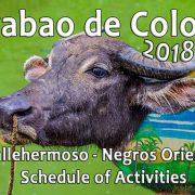Carabao de Colores 2018 in Vallehermoso - Negros Oriental