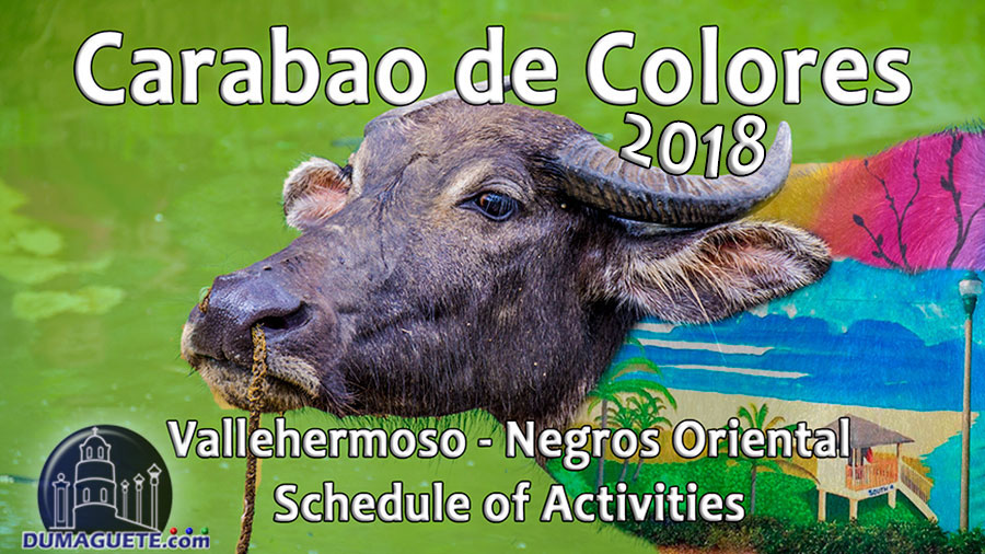 Carabao de Colores 2018 in Vallehermoso - Negros Oriental