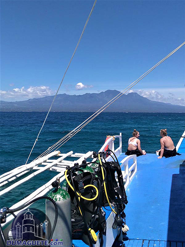Diving in Apo Island - Negros Oriental