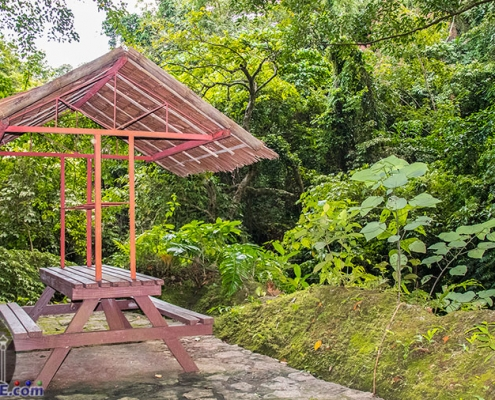 Lake Balanan - Siaton - Negros Oriental - Picnic Tables