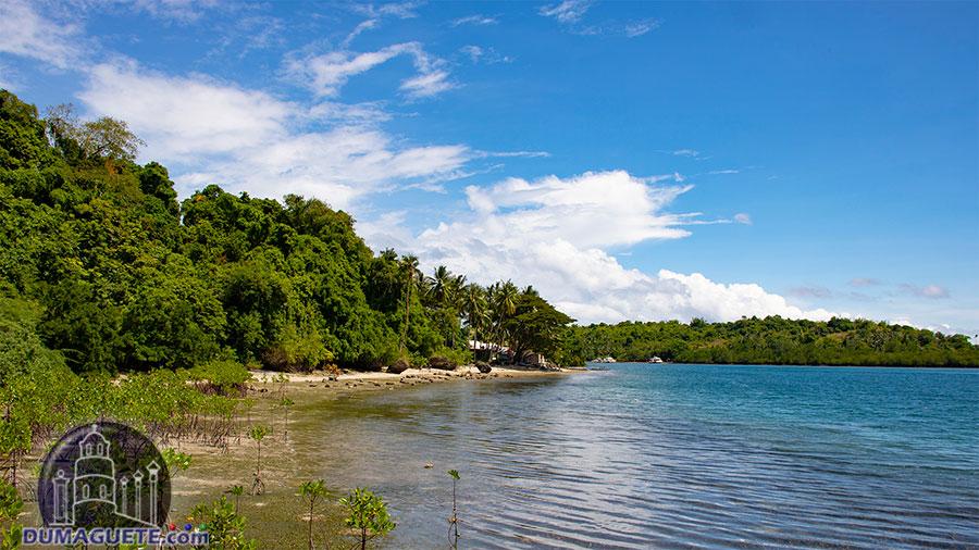Siaton - Negros Oriental - Turtle Island - Beach
