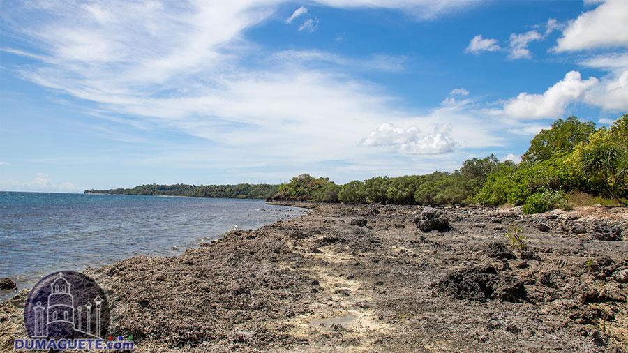 Siaton - Negros Oriental - Turtle Island - Rocks