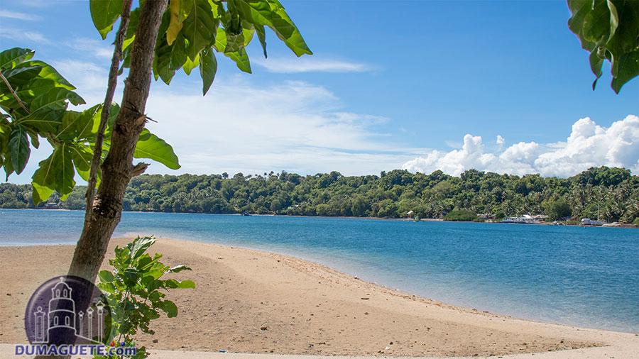 Siaton - Negros Oriental - Turtle Island
