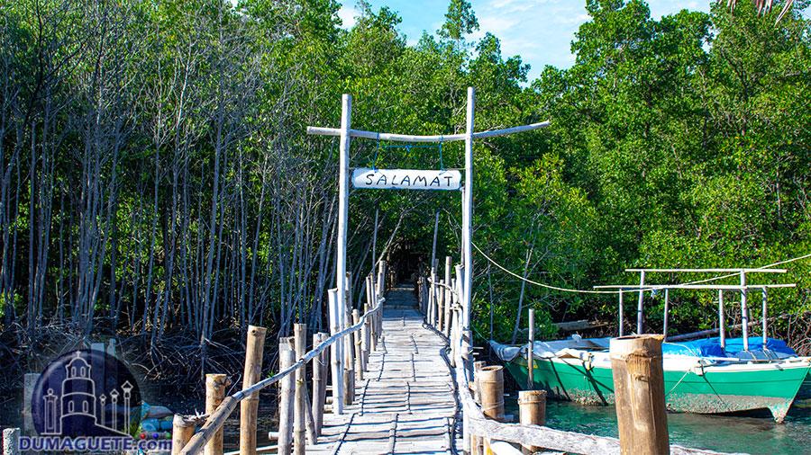 Tambobo Bay - Siaton - Boardwalk