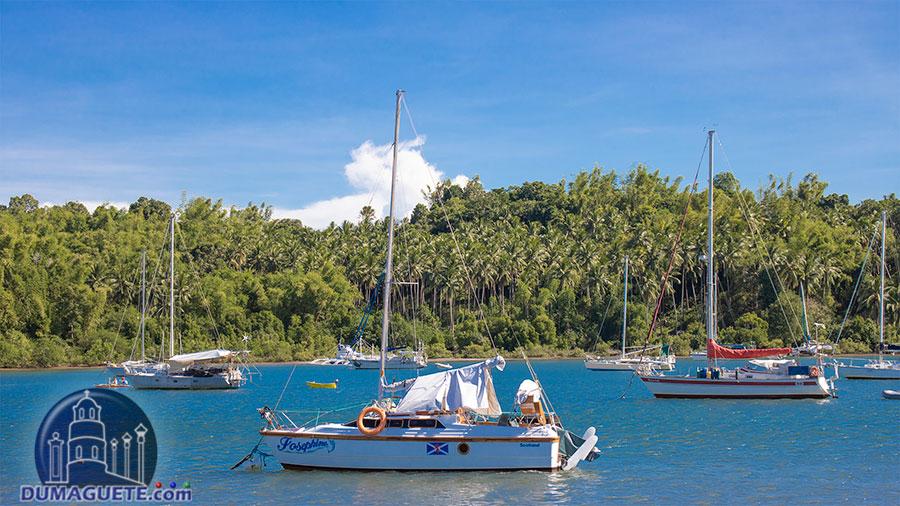 Tambobo Bay - Siaton - Yacht