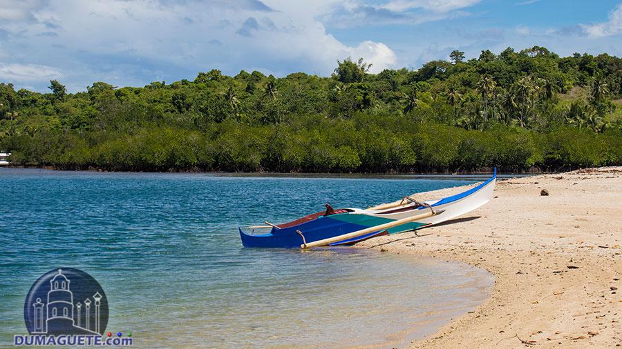 Turtle Island - Siaton - Boat Ride