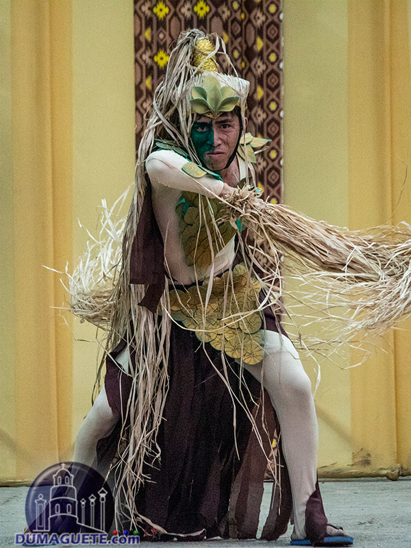 Langub Festival 2019 - Mabinay - Negros Oriental