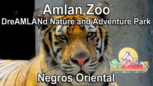 Amlan Zoo – DreAMLANd Nature and Adventure Park – Video