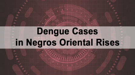 Dengue Cases in Negros Oriental Rises