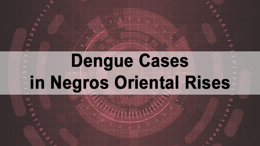 Dengue Cases in Negros Oriental Rises