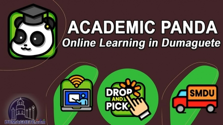 Academic Panda – Online Learning in Dumaguete City