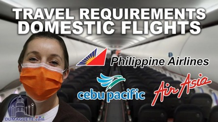 Travel Requirements for Domestic Flights in the Philippines